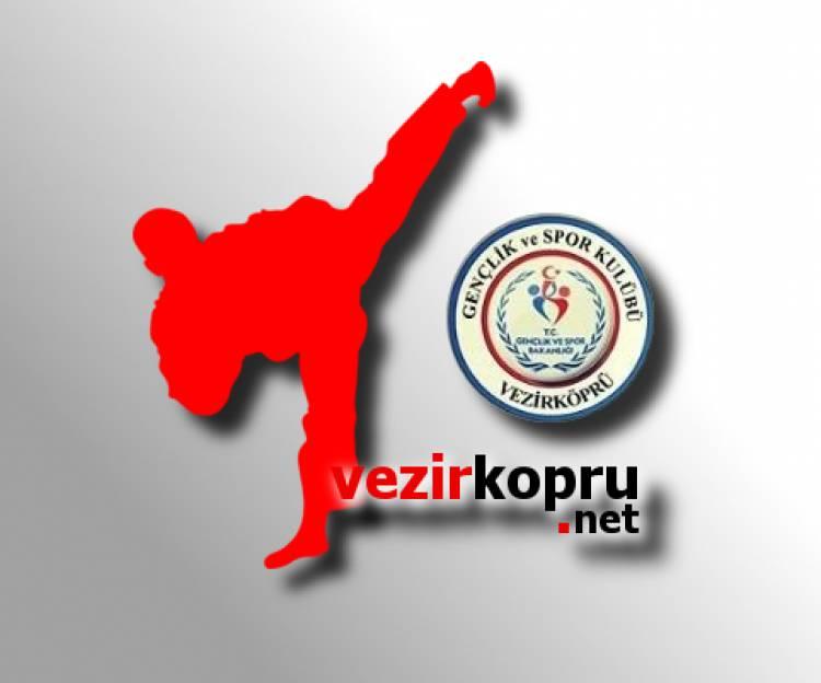 Vezirköprü GSK'ya Taekwondo'dan Beş Madalya Birden